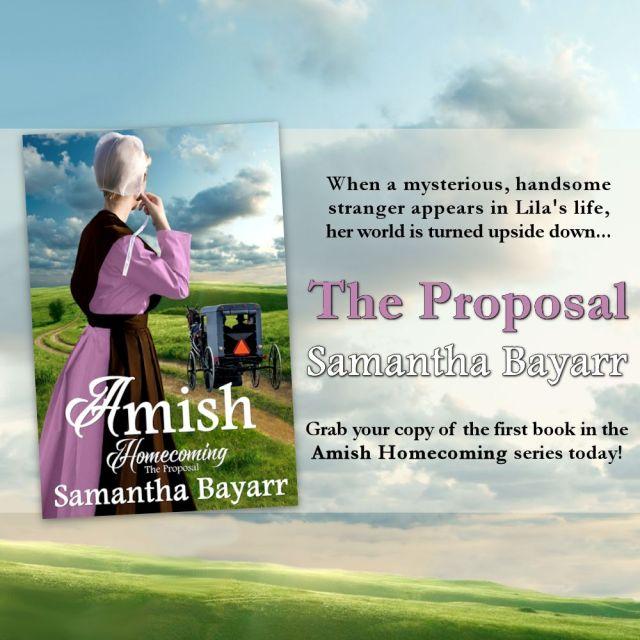 The Proposal Bayarr